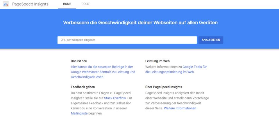 screenshot Google Page Speed website